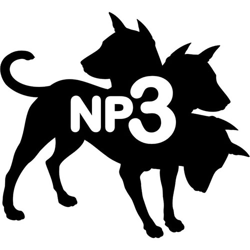 Logo NP3